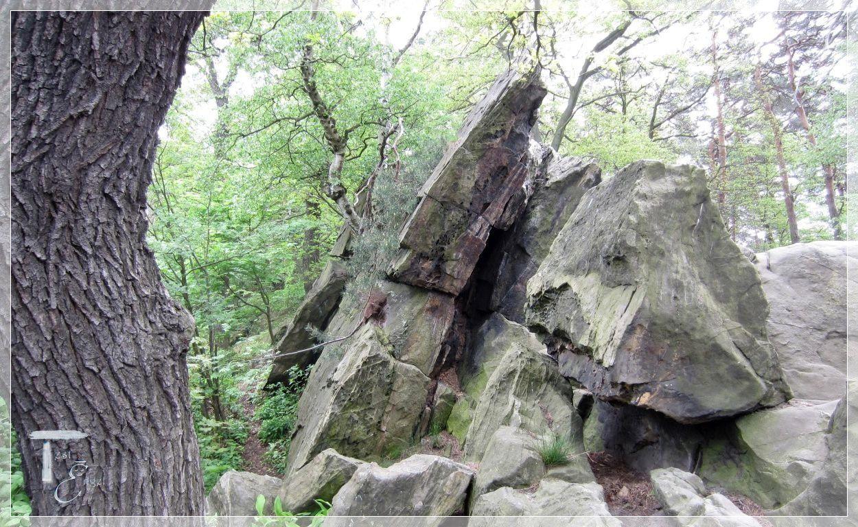 Ein Tag im Harz – Teufelsmauer