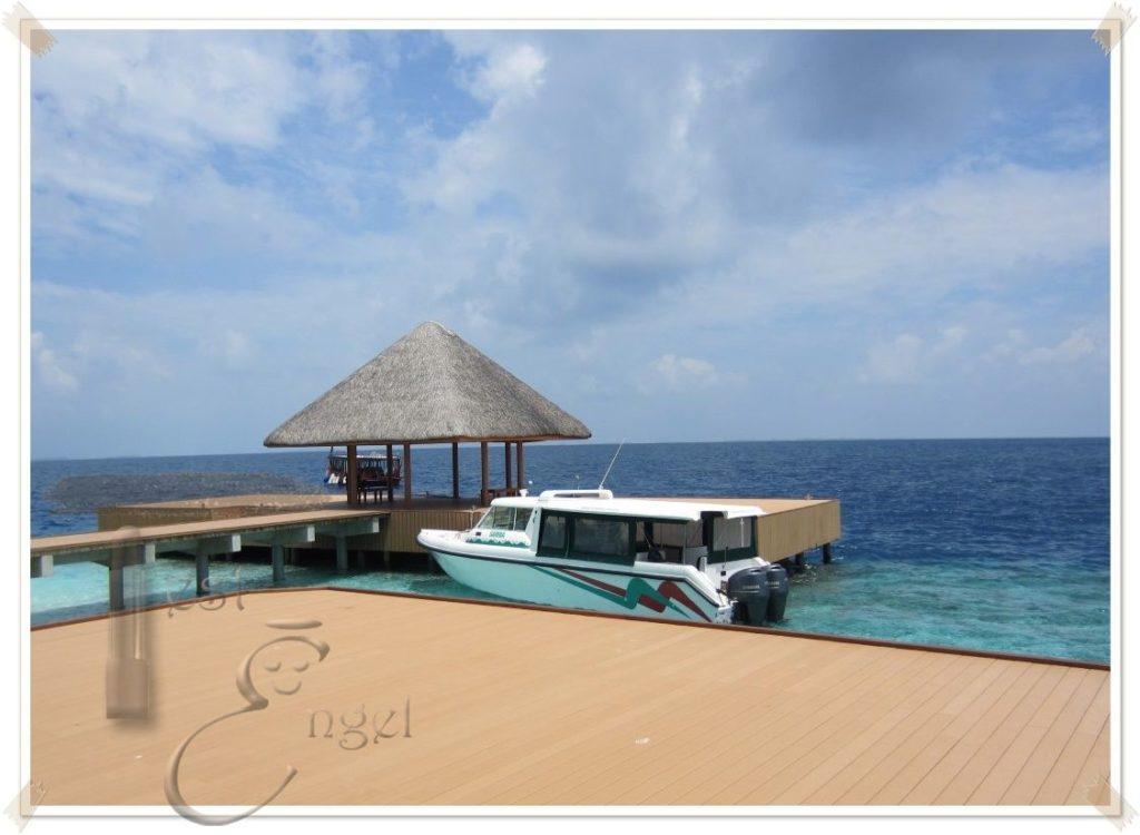 maledive2016-testengel_2a