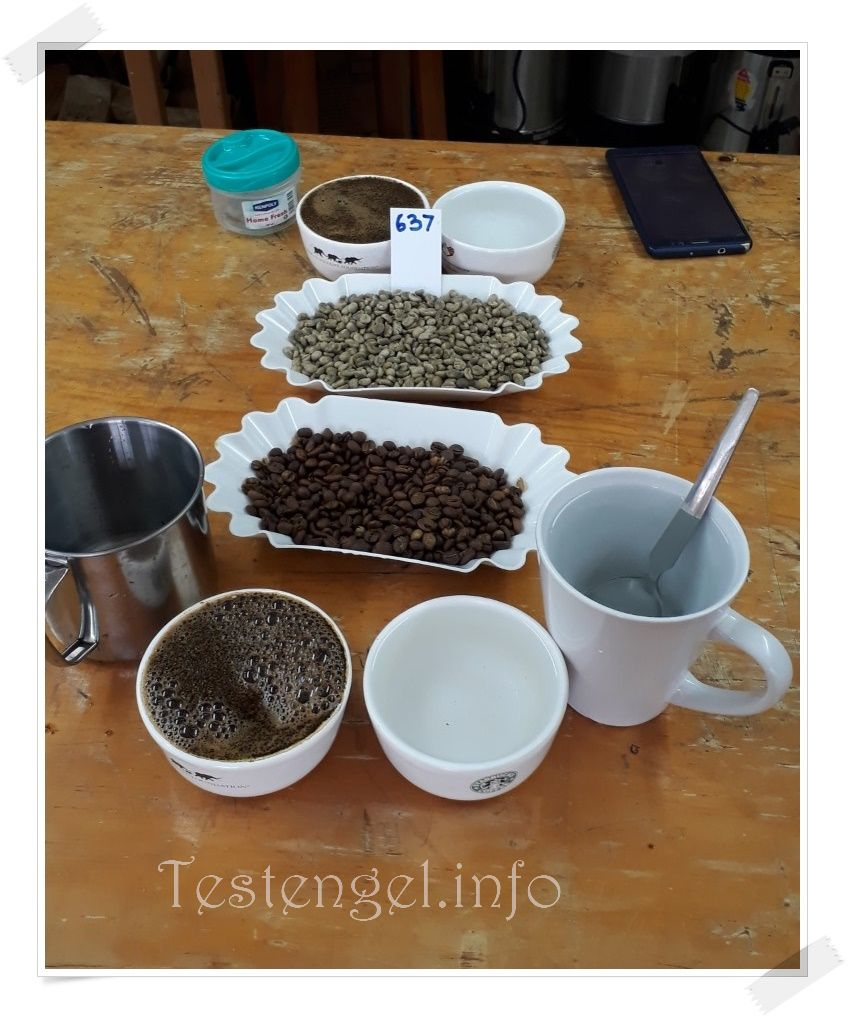 Kenia Kaffeefarm