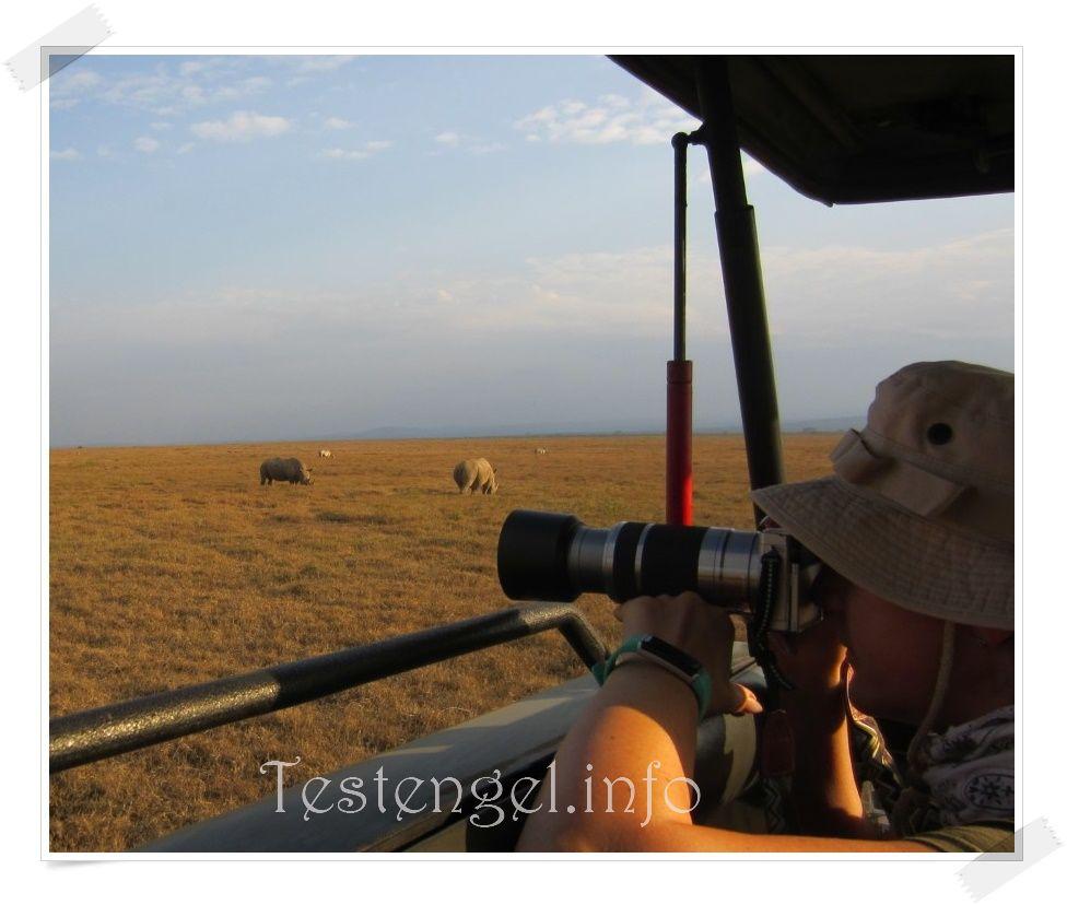 Kenia Solio Rhino Schutzgebiet